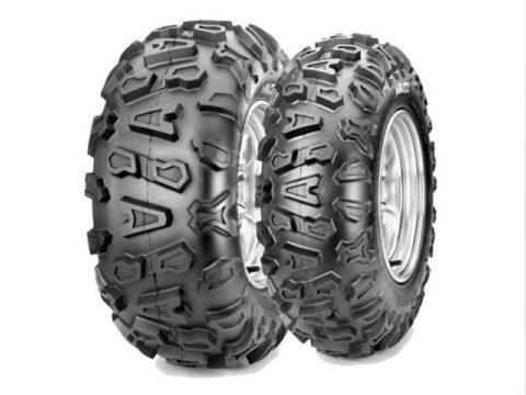 Neumáticos Abuzz